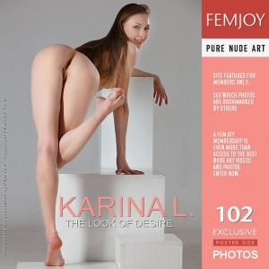 Karina L - The Look Of Desire