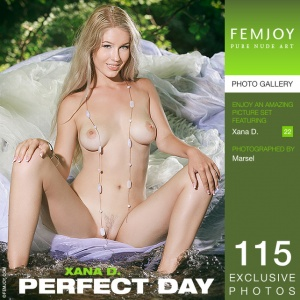 Xana D - Perfect Day